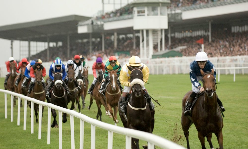 Galway Races September  - Hotel in Galway City Centre